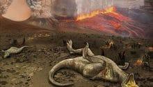6ème extinction