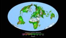 CO2 verdissement